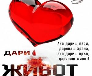 photo_verybig_1246846