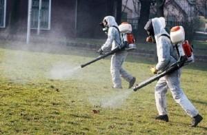 640-420-zapochva-porednoto-pryskane-sreshtu-komari-v-plovdiv