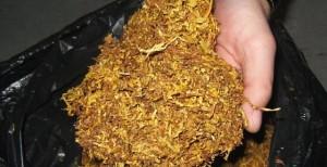 тютюн-640x330-1